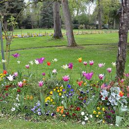 Le Jardin Massey Tarbes